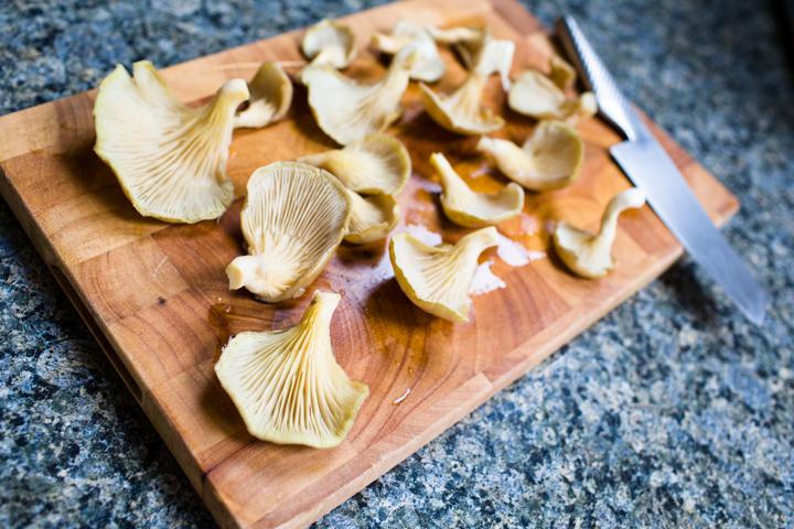 Grocycle mushroom grow kit grocycle - Growing oyster mushrooms profit ...